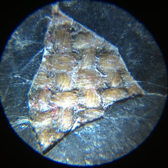 Lacune de matière picturale sous microscope